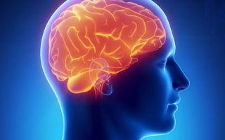 Восстановление после черепно мозговой травмы